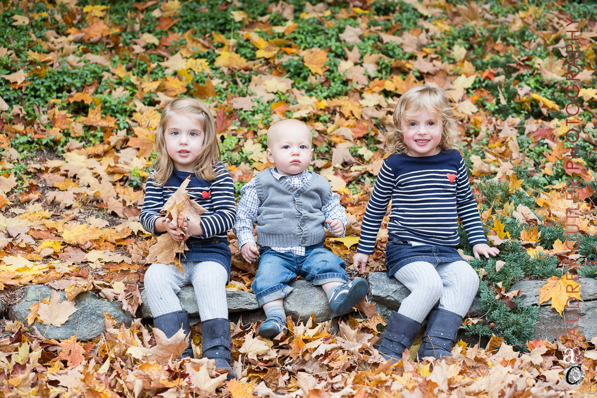 Candid Family Portrait Photographer © Audrey Cutler Photography