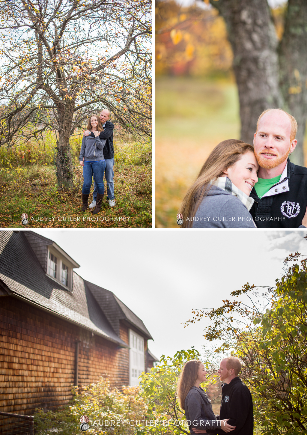 Wachusett_Meadow_Engagement_in_Fall-IMG_0631
