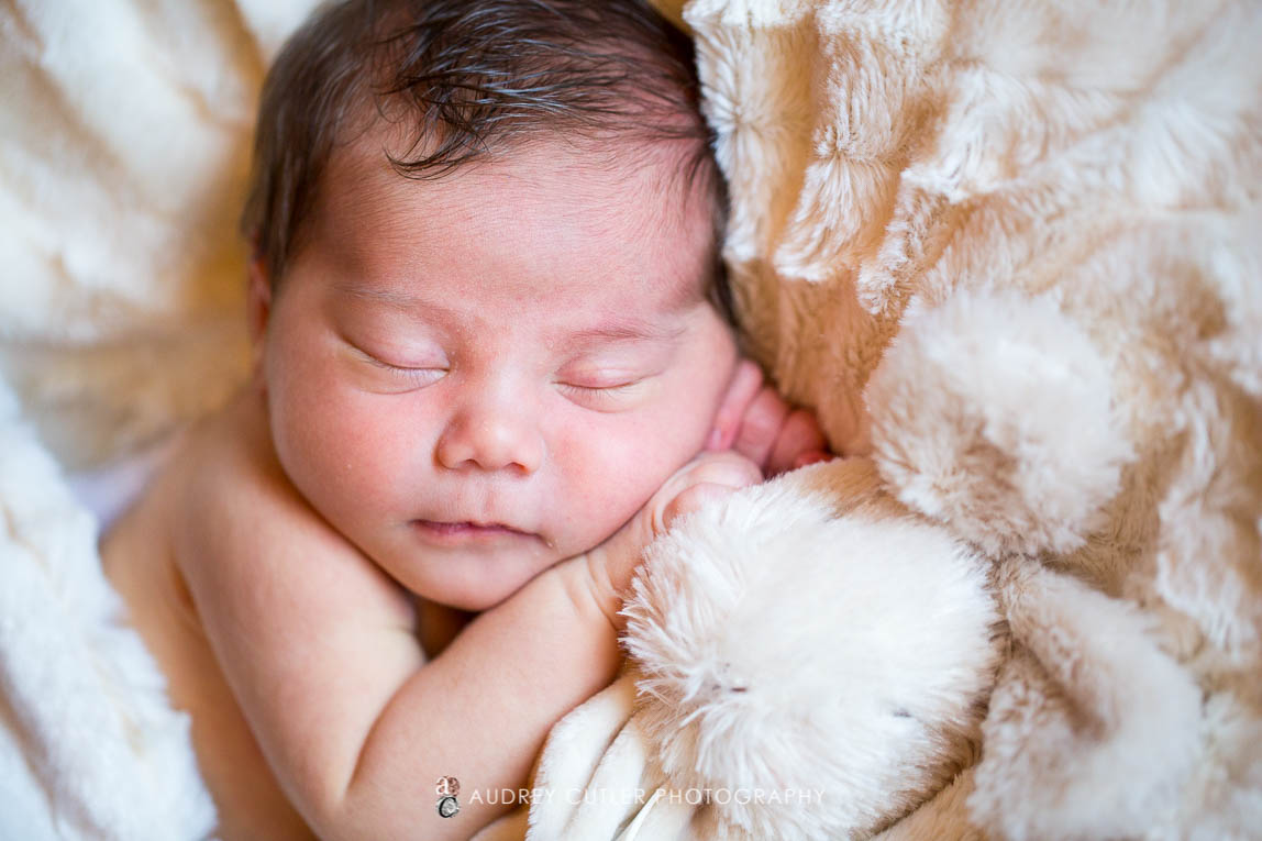Family-newborn-photography-at-home
